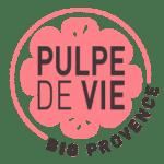 Logo footer PDV